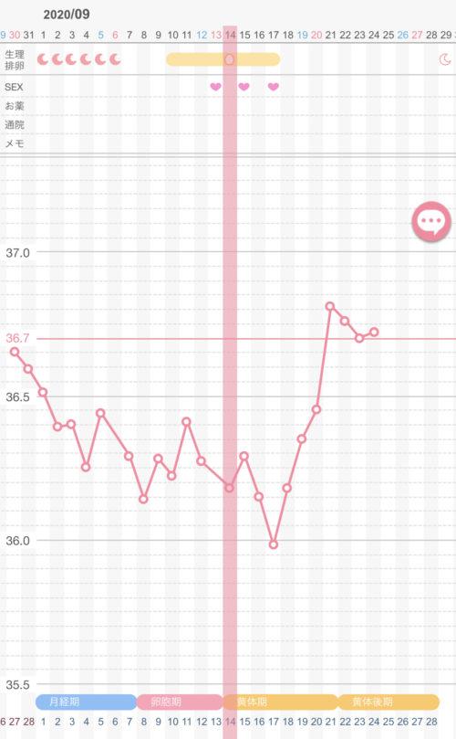ブログ 高温期6日目 妊娠した時